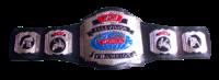 WCW TV TITLE 1992-1995