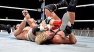 WrestleMania Revenge Tour 2013 - Bologna.4