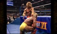 Hogan vs. Warrior 14