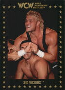 1991 WCW Collectible Trading Cards (Championship Marketing) Sid Vicious 60