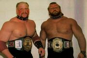 LOD - NWA Georgia National Tag Team Champions