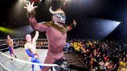 11-8-14 WWE 4