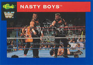 1991 WWF Classic Superstars Cards Nasty Boys 28