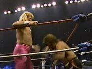 Great American Bash 1987.00032