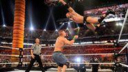 WrestleMania 28.105