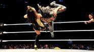 5-8-14 WWE Cardiff 1