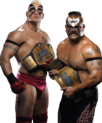 Animal heidenreich wwe tag champs 01