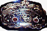 WWWF Jr. Heavyweight Champion