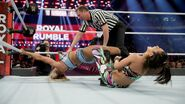 Royal Rumble 2017.30