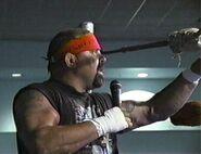 Rick Steiner 16