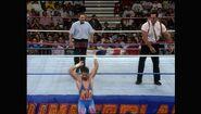 SummerSlam 1993.00021