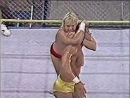 Great American Bash 1991.00045