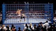 Steel Cage Images.8
