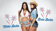 The Bellas 2013 All-American Divas WWE Shoot