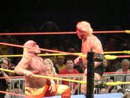 Hulkamania Night 1 14