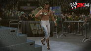 WWE 2K14 Screenshot.134