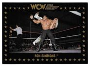 1991 WCW Collectible Trading Cards (Championship Marketing) Ron Simmons 16