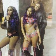 WWE House Show (February 13, 16') 1