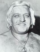 Swede Hanson (wrestler)