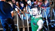 WrestleMania Revenge Tour 2013 - Amnéville.10