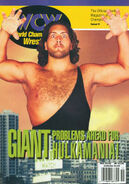 WCW Magazine - November 1995