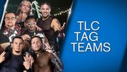 WWE Network Collections - TLC Tag Teams