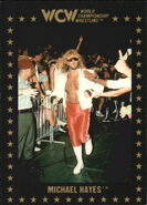 1991 WCW Collectible Trading Cards (Championship Marketing) Michael Hayes 24
