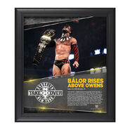 Finn Bálor NXT TakeOver Brooklyn 15 x 17 Photo Collage Plaque