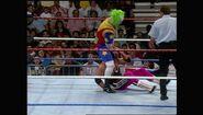 SummerSlam 1993.00030