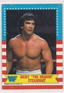 1987 WWF Wrestling Cards (Topps) Ricky Steamboat 21