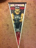 NWO Hollywood Hogan Pennant