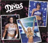 WWE Divas 2013 Wall Calendar