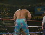1.9.88 WWF Superstars.00014
