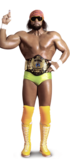 Randy Savage Full