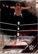 2016 WWE (Topps) Adam Rose 1