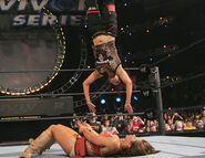 Survivor Series 2006.10