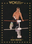 1991 WCW Collectible Trading Cards (Championship Marketing) Ricky Morton 102