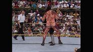 WrestleMania IX.00040