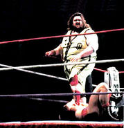Giant Haystacks Final Version