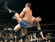 WrestleMania 20.14