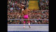 SummerSlam 1992.00014