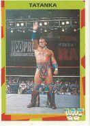 1995 WWF Wrestling Trading Cards (Merlin) Tatanka 127