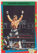 1995 WWF Wrestling Trading Cards (Merlin) Shawn Michaels 51