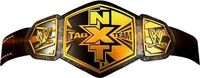 WWE NXT Tag Title