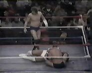 WWF The Wrestling Classic.00026