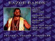 WWF Royal Rumble (JUE) -!-025