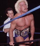 Ric Flair WCW Championship