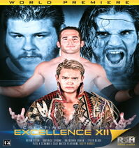RoH Creating Excellence XII Black vs Steen Poster