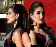 Bella Twins.56