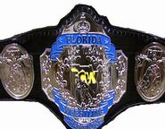 FCW Tag Title